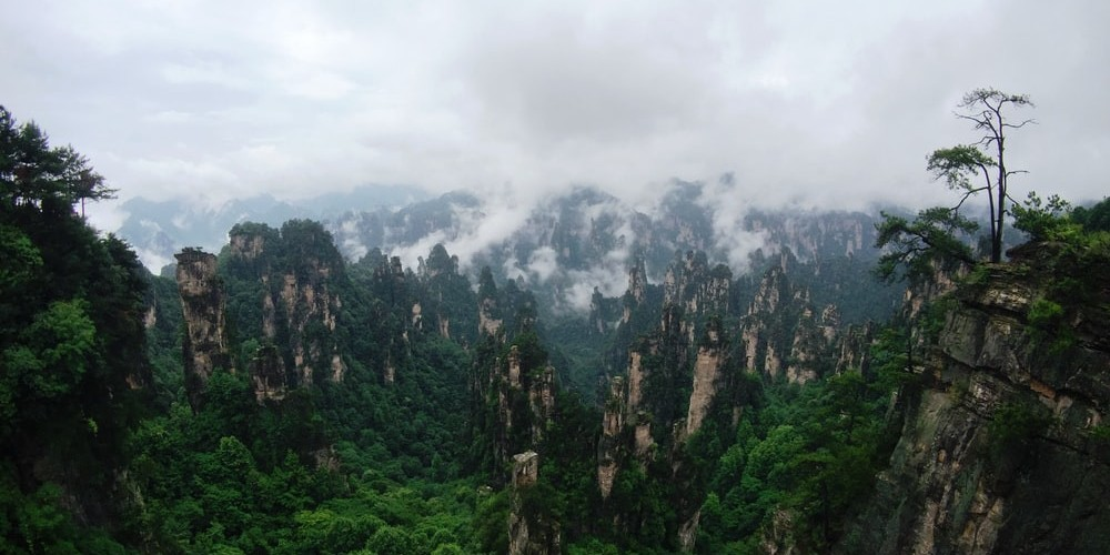 A GUIDE TO SUSTAINABLE LIVING IN CHINA – PART I