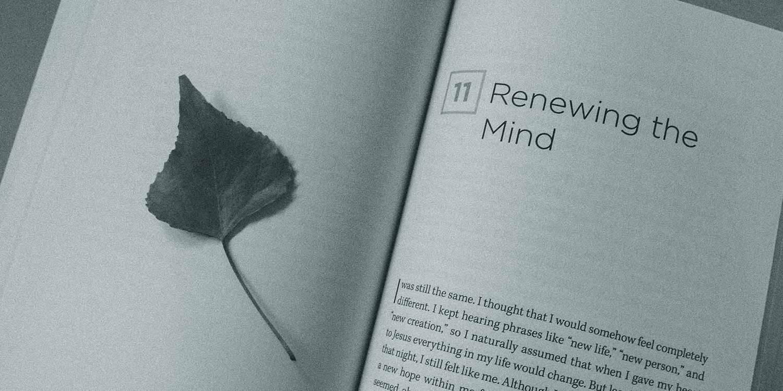 Tertarik Untuk Membaca Novel Bahasa Inggris Ini Dia Beberapa Tips Untuk Memahaminya Dengan Mudah