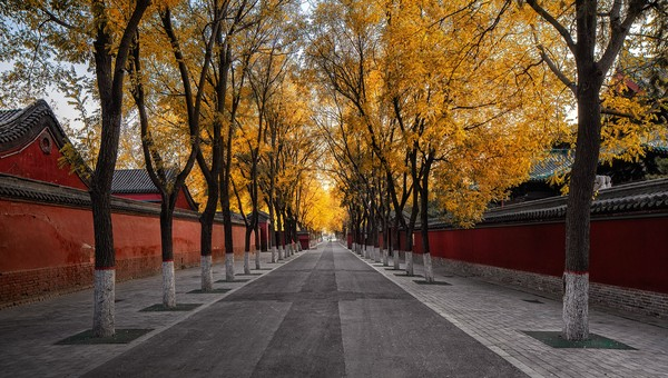 17 THINGS I WISH I KNEW BEFORE LIVING IN CHINA