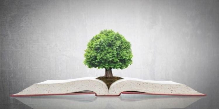 Веселые книги о том, как сделать нашу планету зеленее