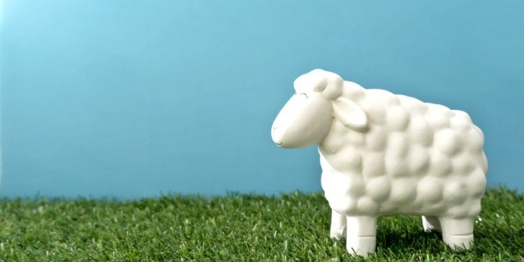 Mary had a little lamb | У девочки Мэри была овечка