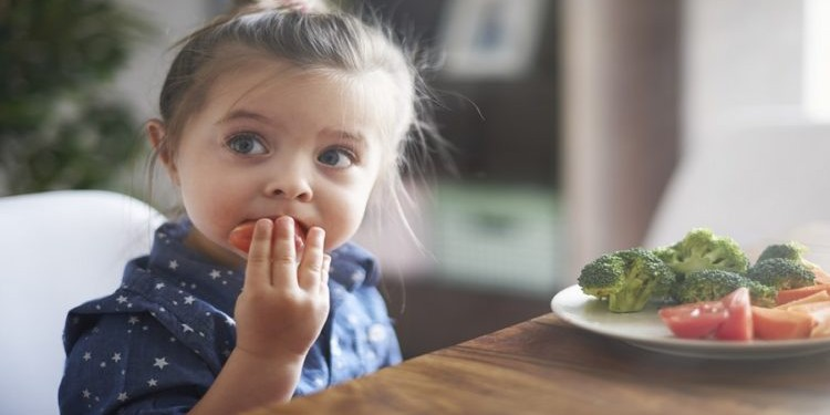 Правильно ли питается ваш ребенок?