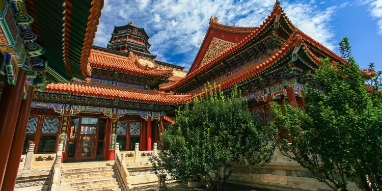 THINGS YOU MUST TAKE ADVANTAGE OF WHEN MOVING TO CHINA